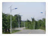 Fabbrica Price 5m 30W Solar LED Street Light