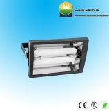 Projecteur d'induction avec 80W, 100W, 120 W, 150W, pour une lampe à économie d'énergie (LG0550-2)