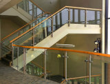 De lage Portiek van het Onderhoud, Dek, het Traliewerk van de Wacht van het Balkon met de Spin van het Glas van het Roestvrij staal