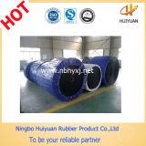 BerufsManufacturer von Rubber Belt