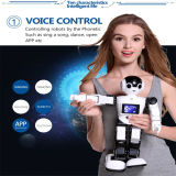 2016 Rk01 지 로봇 두목 방수 로봇 초기 교육 로봇