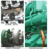 Centrale elettrica del biogas di trattamento residuo