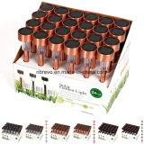 Luz solar decorativa de jardim solar com LEDs mais vendidos (RS001)
