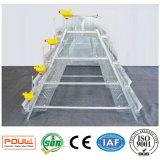 Cage galvanisée plongée chaude neuve de poulet de couche pour l'exploitation d'élevage (un type bâti)