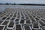 HDPE Austeren-Ineinander greifen-Beutel 100% für die Aquakultur-Landwirtschaft