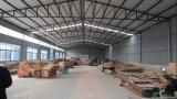 Garage del metallo della struttura d'acciaio e costruzione del workshop (KXD-pH11)