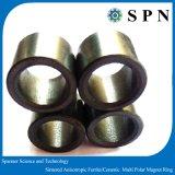 De permanente Isotrope Ringen van de Magneet van de Motor van de Pers van het Ferriet Droge Stappende