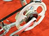 20インチのアルミ合金が付いているTsinovaの熱い販売の充満Eバイク