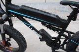 جديدة تصميم [250و] مصنع يخفى بطّاريّة درّاجة كهربائيّة سمين