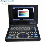 Canyearn A10V полностью цифровая ноутбук ветеринарных ультразвукового сканера