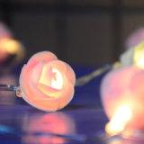 La batterie de DEL Rose allume les quirlandes électriques de Valentine