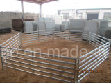 L'Australia ha galvanizzato i comitati usati delle pecore delle rotaie del bestiame Panels/6 del bestiame (XMR22)