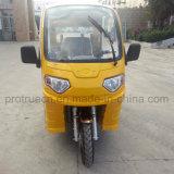 Tres ruedas motocicleta triciclo de discapacitados para el Turismo