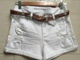 Pantaloni casuali della tintura dell'indumento dei pantaloni dei pantaloni di colore dei pantaloni delle donne dell'OEM della fabbrica