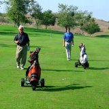 Il CE approva il migliore carrello di golf di vendita su ordinazione di spinta elettrico (DG12150-A/1)
