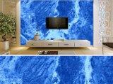 Revestimiento de pintura de pared interior de la casa de la pintura de colores