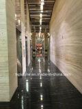 Lastra di marmo nera delle mattonelle di pavimentazione per la pavimentazione