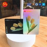 Livrar cartões cheios do PVC de Keychain da impressão do projeto