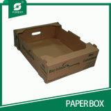 Rectángulo de empaquetado de papel de la fruta acanalada de encargo
