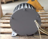 генератор альтернатора постоянного магнита свободно энергии 10kw 96V/120V/220V низкоскоростной