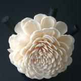 ハンドメイドによるリード拡散器のための一般にMultifloraローザSolaの花