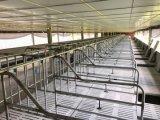 DIP фермы свиньи самомоднейшей конструкции изготовления Китая прочный горячий гальванизировал стойла хавроньи