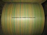 Le meilleur tissu tissé par pp des prix de la Chine en roulis