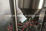 De automatische Vloeibare Machine van de Verpakking van de Blaar