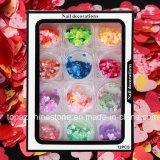 12color/Set de kleurrijke Lovertjes van het Ontwerp van de Spijker van de Decoratie van de Kunst van de Spijker van Kerstmis van de Vlokken van de Laser Zilveren Paillettes hart-Gevormde schitteren (ND06)