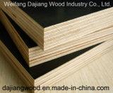 عادية ضمانة بناء خشب رقائقيّ مع فيلم يواجه