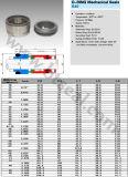 Ring-mechanische Dichtungen (B40) 1