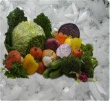 0.8t/Day per alimento fresco e frutti di mare che elaborano la macchina di fabbricazione di ghiaccio del fiocco