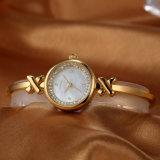 최신 판매 시계 OEM ODM 팔찌 시계 (WY-022A)