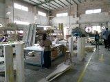 Materiale da costruzione del medaglione del soffitto dell'unità di elaborazione