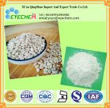 Extrait blanc d'haricot nain