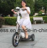 3개의 바퀴 전기 차량 공장 가격을%s 가진 전기 기관자전차 자전거 스쿠터