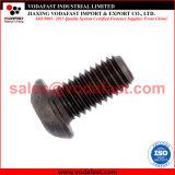 ISO 7380-1のめっきされる半分の円形のヘッドソケットねじ完全な糸亜鉛