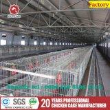 Гальванизированная стальная клетка цыпленка слоя ячеистой сети для Африки будет фермером (A3L90)