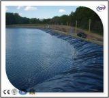 40/60/80 doublure d'étang d'exploitation de pisciculture de Geomembrane de HDPE de mils