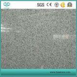 Granit gris de la pierre G603 de vente chaude avec flambé/poli pour la brame/paver/partie supérieure du comptoir/étage/escaliers/pavage/pavé de jardin/plaza