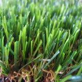 De V-vorm Populair Japan van de Mat van het Gras van het polyethyleen