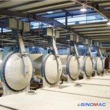 autoclave de brique de 2X31m AAC pour le marché de l'Iran avec la haute performance