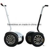 1000W Bicicleta eléctrica con 2 ruedas