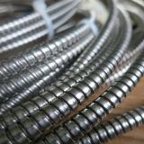 Flexible en acier inoxydable conduit électrique
