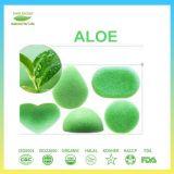 Spugna Konjac di pulizia facciale del tè verde di 100%
