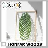 Heißes Verkaufs-Acrylprobenmaterial-natürlicher Holzrahmen für Dekoration