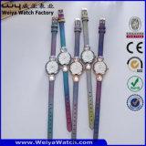 숙녀 (WY-077D)를 위한 주문 로고 석영 시계 형식 손목 시계