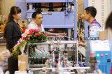 25mm Paketkasten, der Maschine Cheng Lin Selbstfalz und Unterseite das Kleben der Maschine für Plastikkasten 25mm bis 800mm sperren lässt