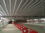Casa de pollo de acero prefabricada de la fama de la estructura de acero