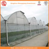 Het Systeem van de Hydrocultuur van de Serres van het polyethyleen voor Groenten/Bloemen/Fruit